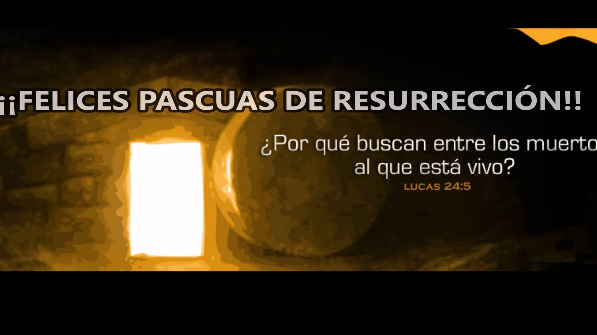 Reflexión De La Mañana Feliz Pascua De Resurrección